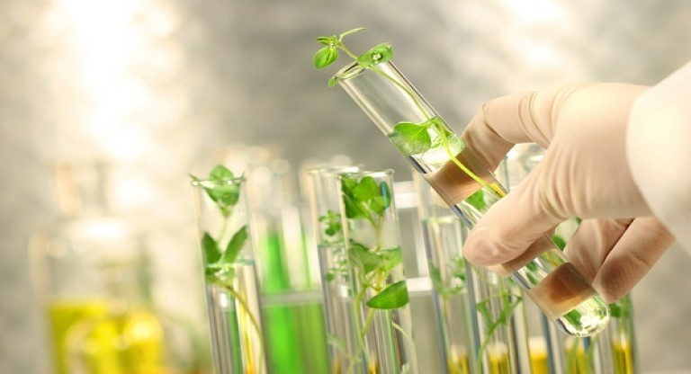 Ngành Công nghệ sinh học y dược ra làm gì?