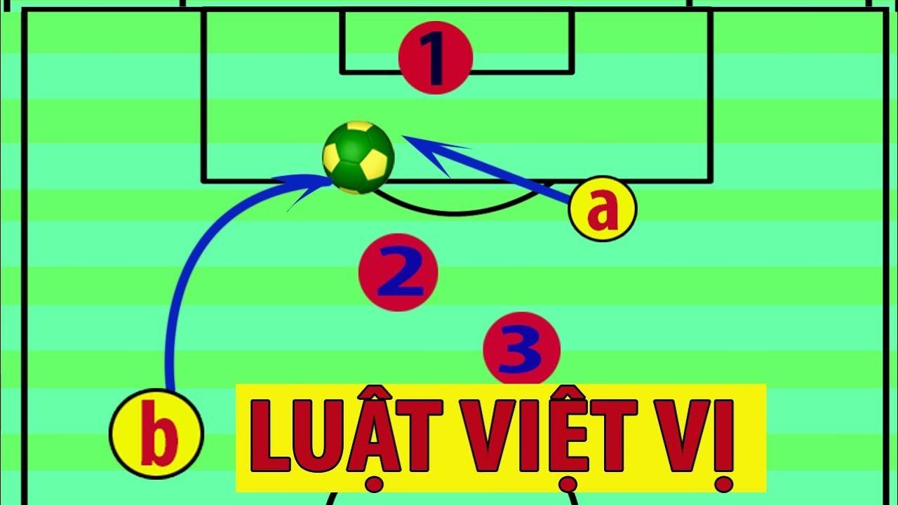 viet-vi-la-gi-2